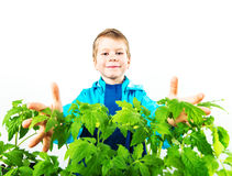 Happy spring gardening boy Stock Images