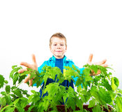 Happy spring gardening boy Royalty Free Stock Photography