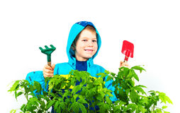 Happy spring gardening boy Stock Photos