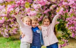 Happy spring vacation. Children enjoy warm spring. Lost in blossom. Girls and boy friends posing near sakura. Kids on stock photography
