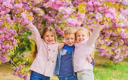 Happy spring vacation. Children enjoy warm spring. Lost in blossom. Girls and boy friends posing near sakura. Kids on. Pink flowers of sakura tree background royalty free stock photos