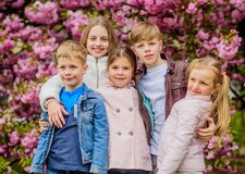 Happy spring vacation. Children enjoy warm spring. Lost in blossom. Girls and boys friends posing near sakura. Kids on royalty free stock photography