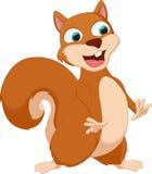 Happy squirrel cartoon Stock Image