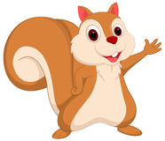 Happy squirrel cartoon waving Stock Photos