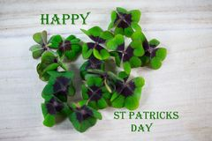 Happy st patricks day, luck clover