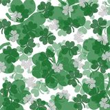 Happy St. Patty's Day! Royalty Free Stock Photo