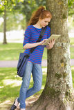 Happy student leaning against a tree using her tablet pc Royalty Free Stock Images