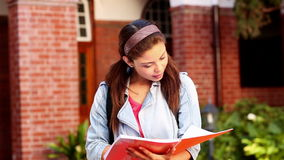 Happy student reading from folder Royalty Free Stock Photos