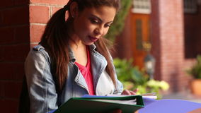 Happy student reading from folder Royalty Free Stock Images