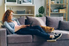 Happy student using laptop sitting on couch with shiba inu dog in apartment. Happy student pretty girl is using laptop sitting on couch with shiba inu dog in stock photo