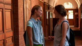 Happy students chatting together in a hall. In slow motion stock video