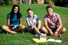 Happy students in park smiling Stock Photos