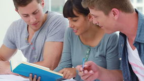Happy students seriously doing their homework stock footage