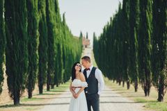 Happy stylish smiling couple walking and kissing in Tuscany, Ita royalty free stock photography