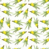 Happy Sukkot seamless pattern. Jewish holiday nuts endless background. vector illustration