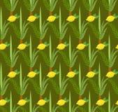 Happy Sukkot seamless pattern. Jewish holiday nuts endless background. royalty free illustration