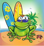 Happy summer frog. With signboard Royalty Free Stock Images