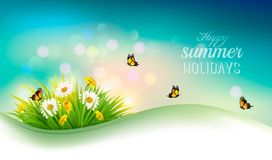 Happy summer holidays background with flowers, grass Royalty Free Stock Photos