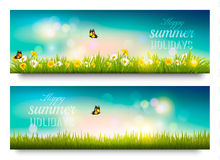 Happy summer holidays banner with flowers, grass and butterflies Royalty Free Stock Images
