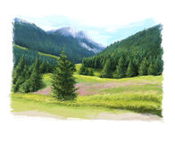 Happy summer scene - pastures in the mountains Royalty Free Stock Photography