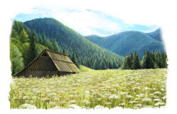 Happy summer scene - pastures in the mountains Royalty Free Stock Photo
