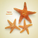Happy summer. Sentence happy summer and some starfishes on a beige background, with a retro effect Stock Images