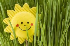 Happy sun Stock Photos