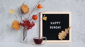 Happy Sunday text on black letter board and bouquet of branches with yellow leaves on clothespins in vase and cup of tea. On table Template for postcard stock video footage