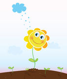 Happy sunflower Stock Image
