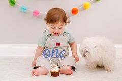 Happy surprised cute Caucasian baby boy celebrating first birthday at home. Child kid sitting on floor with pet dog. Tasty cupcake