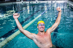 Happy swimmer put his hands up. In swimming pool Royalty Free Stock Images