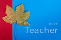 Happy Teachers' Day greeting card. Text Best Teacher and autumn leaf on blue and red background royalty free stock images