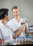 Happy Technicians Analyzing Sample In Lab Royalty Free Stock Images