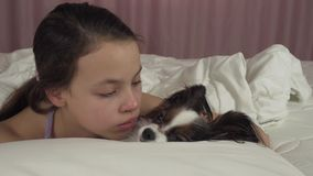 Happy teen girl kisses and plays with dog Papillon in bed stock footage video stock video footage