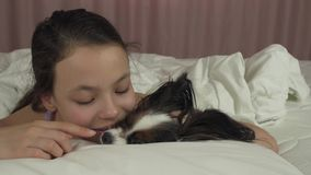 Happy teen girl kisses and plays with dog Papillon in bed stock footage video stock video
