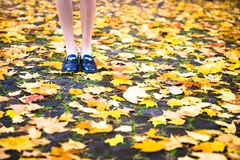 Happy teen girl smile during walking on autumn park Royalty Free Stock Photo