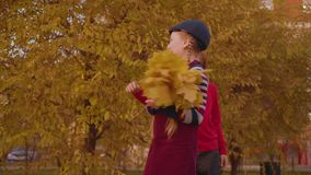 Happy teenage boy presenting autumn bouquet to girl stock footage