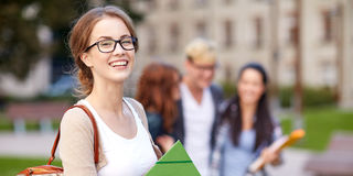 Free Happy Teenage Students With School Folders Royalty Free Stock Photography - 53950367