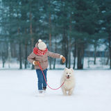 Happy teenager boy running and playing with white Samoyed dog Stock Images