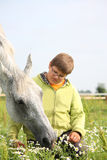 Happy teenager boy and white horse at the field Royalty Free Stock Images
