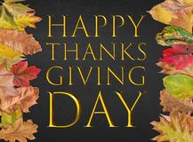 Happy thanks giving day design golden postcard banner. With autumn leaves Royalty Free Stock Images