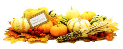 Free Happy Thanksgiving Royalty Free Stock Photography - 26798837