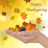 Happy Thanksgiving. Female hand with pumpkin autumn leaves grapes, happy Thanksgiving concept Stock Photos