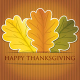 Happy Thanksgiving! Stock Images