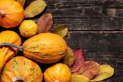 Happy Thanksgiving Background. Autumn Harvest and Holiday border. Selection of various pumpkins on dark wooden background. stock photo