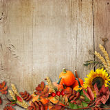 Happy Thanksgiving background stock photography