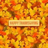 Happy Thanksgiving background with maple leaves Stock Photography