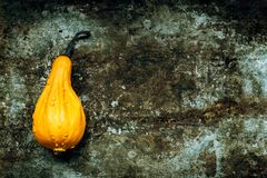 Happy Thanksgiving Background. Orange pumpkin on rustic metal background with copy space. Autumn Harvest. Happy Thanksgiving Background. Orange pumpkin on stock image