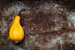 Happy Thanksgiving Background. Orange pumpkin on rustic metal background with copy space. Autumn Harvest. Happy Thanksgiving Background. Orange pumpkin on stock photo