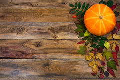 Happy Thanksgiving  greeting with fall leaves on rustic wooden b Royalty Free Stock Photography